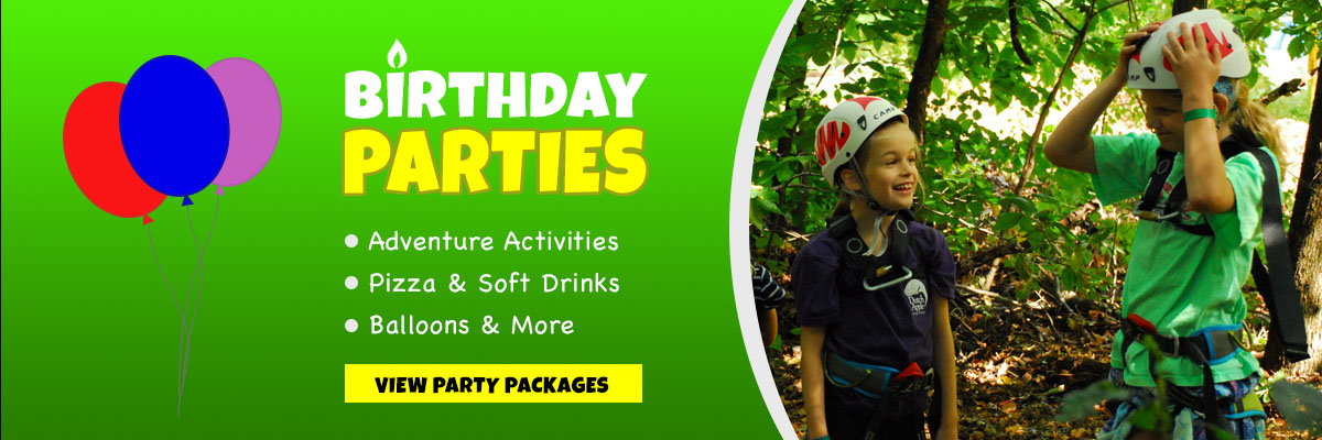 Book Your Next Birthday Party or Event at Treehouse World